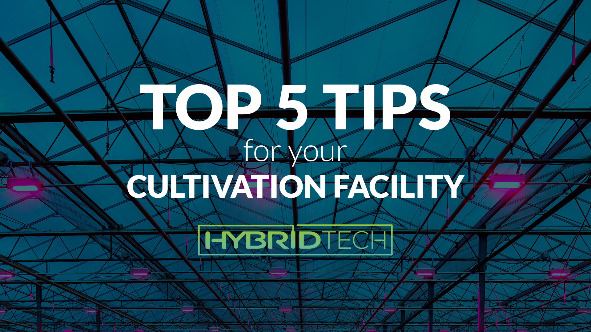 Top 5 Tips for your Cultivation Facility